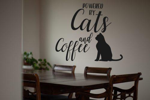 Cicás falmatrica macska coffe