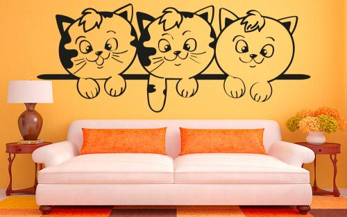 Cicás falmatrica macska kölykök 3