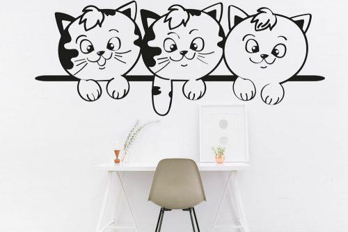 Cicás falmatrica macska kölykök 5