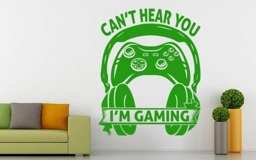 gamer falmatrica cant hear you 1
