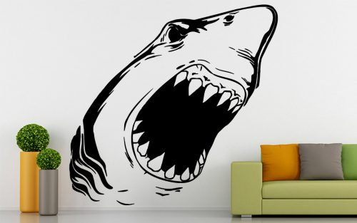 halas falmatrica cápa 3