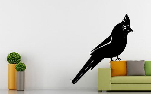 madaras falmatrica papagáj cuki 2