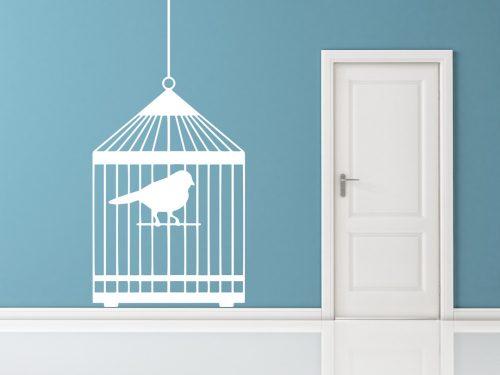 madaras falmatrica papagáj kalitkában 2 2