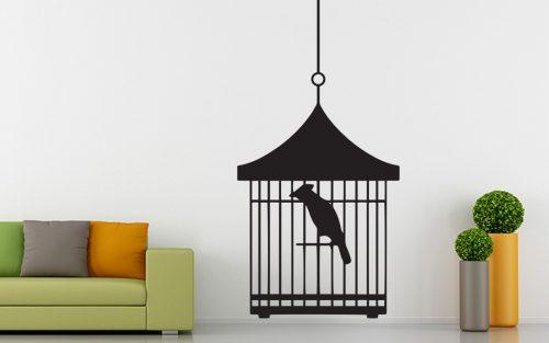 madaras falmatrica papagáj kalitkában 3 1